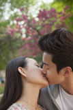 Young couple in love and kissing outdoors in the park Stock Images