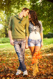 Young Couple In Love In Park Stock Image