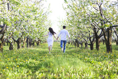 Young couple in love running in spring blossom garden. Happiness and love concept Stock Photos