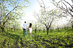 Young couple in love running in spring blossom garden Stock Photography