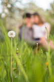 A young couple in love sitting on grass meadow, kissing Stock Photo