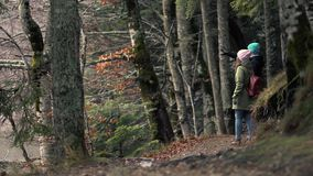 Young Couple In Love Walk Along The Autumn Forest. Beautiful Young Couple In Love Walk Along The Autumn Forest Trail Then Stops And Admires The Picturesque View stock video footage