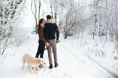 Young couple in love walking with dog Royalty Free Stock Images