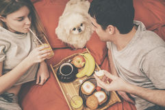 Young couple is lying in bed with dog  . Royalty Free Stock Images