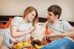 Young couple is lying in bed with dog . Stock Image
