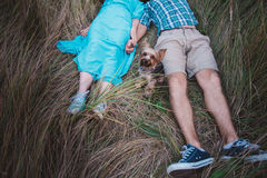 Young couple lying on the grass holding hands and small dog between them Royalty Free Stock Image