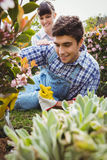 Young couple maintaining plants in garden Stock Photo