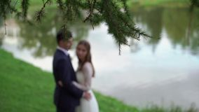 Young couple newlyweds staying in the park near pond and hugging stock video