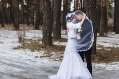 Young couple newlyweds walking in a winter forest in the snow Royalty Free Stock Photography