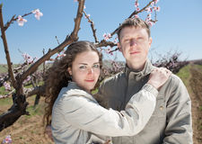 Young couple outdoors. Attractive couple in garden among the blossoming peach trees Royalty Free Stock Image