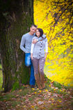 Young couple at the park Royalty Free Stock Images