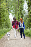 Young couple people and dog Royalty Free Stock Photography