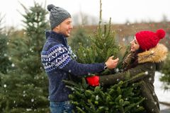 Couple buying Christmas tree Royalty Free Stock Photos