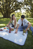 Young Couple On Picnic. Happy young couple on a picnic at park stock images