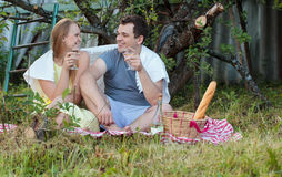 Young couple on picnic in the countryside Stock Images