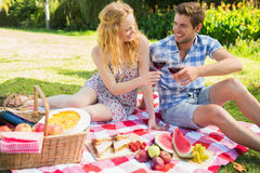 Young couple on a picnic drinking wine Royalty Free Stock Photography