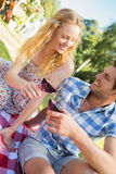 Young couple on a picnic drinking wine Royalty Free Stock Image