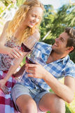 Young couple on a picnic drinking wine Stock Photography