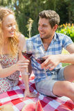 Young couple on a picnic drinking wine Royalty Free Stock Photo