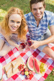 Young couple on a picnic drinking wine Stock Photos
