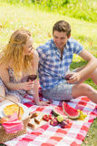 Young couple on a picnic drinking wine Stock Images