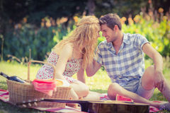 Young couple on a picnic looking at each other Stock Images