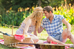 Young couple on a picnic Royalty Free Stock Photography