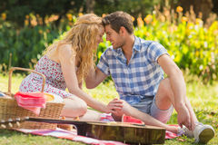 Young couple on a picnic Royalty Free Stock Photo