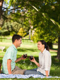 Young couple  picnicking in the park Royalty Free Stock Photos