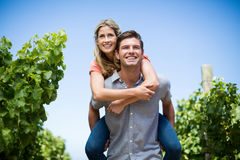 Young couple piggybacking at vineyard against blue sky Royalty Free Stock Photo