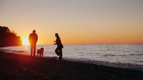 A young couple is playing with a dog on the lake shore. At sunset, slow motion video. A young couple is playing with a dog on the sea shore. At sunset, slow stock video