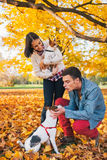 Young couple playing with dogs outdoors Stock Photography