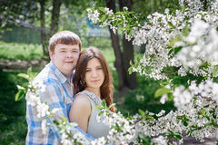 Young couple posing in blossoming spring garden Royalty Free Stock Photography