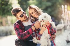Young couple with puppy. Royalty Free Stock Photo