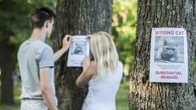 Young couple putting up missing pet banners stock photo