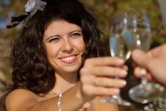Young couple raising wedding toast Royalty Free Stock Photo