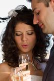 Young couple raising wedding toast Royalty Free Stock Photos