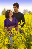 Young Couple in the Rape Field Stock Photos