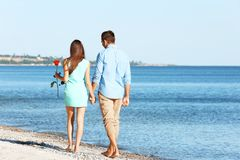 Young couple with red rose walking along beach. On sunny day Stock Image