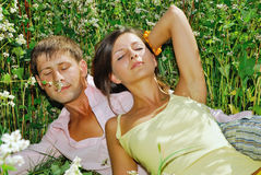 Young couple resting on field of flowers. Young couple on field of flowers Stock Photography