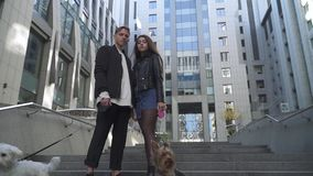 Young couple rests with their dogs at the city. Man and woman stand near each other in the foreground of high buildings. Little dogs are playing with each stock footage