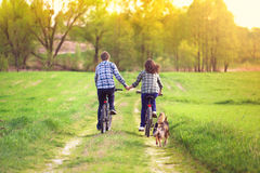Young couple ride bicycles in the meadow. Young happy couple ride bicycles in the meadow back to camera and holding hands Royalty Free Stock Images