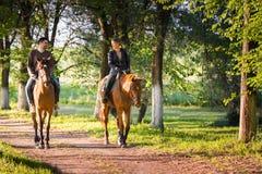 Free Young Couple  Riding A Horse Royalty Free Stock Photos - 72046188