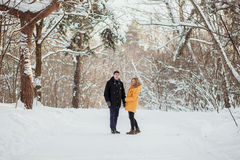 Young couple on romantic  winter walk in a park Royalty Free Stock Image