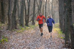 Young Couple Running on the Trail in the Wild Forest Royalty Free Stock Image