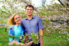 Young couple in the sakura's garden in park Stock Image