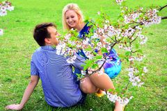 Young couple in the sakura's garden in park Royalty Free Stock Photography