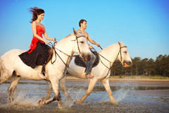Young couple in the sea on horseback Stock Image