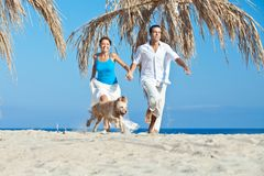 Young couple at sea side playing with their dog. Young couple, summertime, sea side, happy games with their dog Royalty Free Stock Image