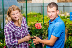 Young couple selects seedlings of flowers. In the nursery Stock Photos